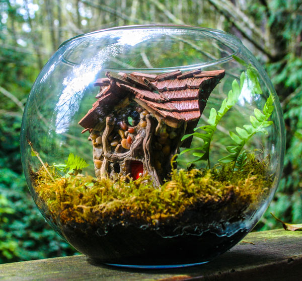fairyarium terrarium sized fairy house in more fairy habitats at fairy woodland - Fairy Garden Terrarium