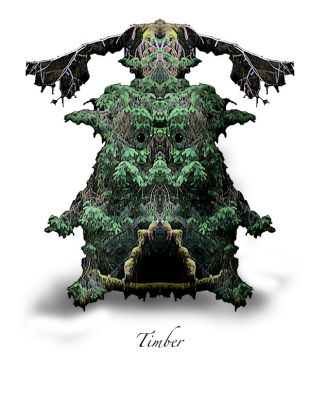 Forest Sprite - Timber in Forest Sprites at Fairy Woodland