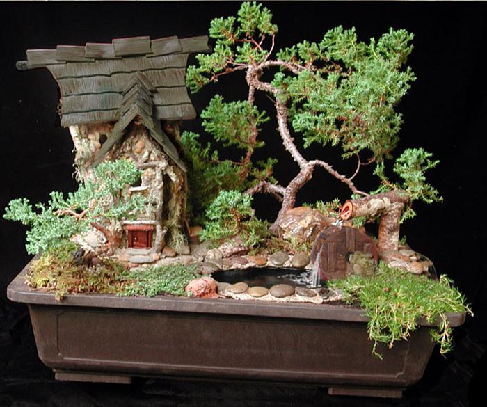 Bonsai Tree Accessories Bonsai Tree